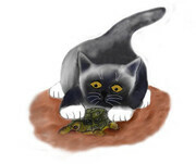 Dark Grey Kitten Discovers a Turtle by the Pond