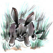 Rabbit, Sumi-e