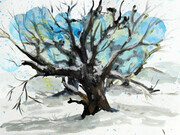 Winter Field Oak, watercolor